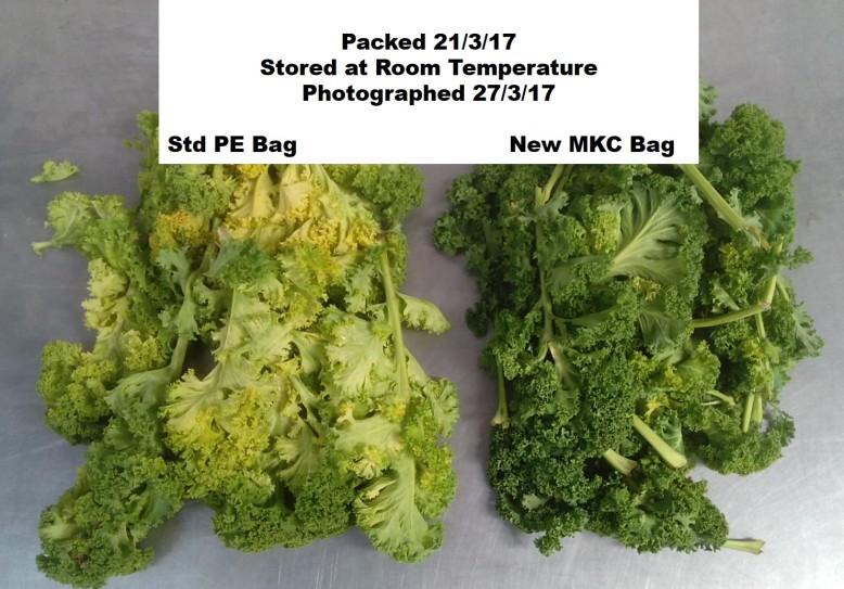 Kale bag v2