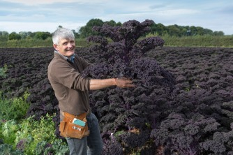 fruit-and-veg-grower-profile-september-2016-molyneaux-holding-purple-kale